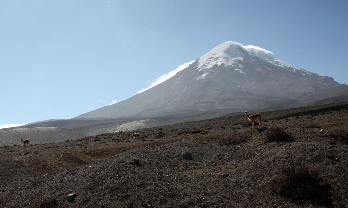 """Ayudar a financiar proyectos de conservación en Ecuador con """"Expérience Ecuador"""""""